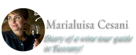 blog Marialuisa Cesani wine tour guide
